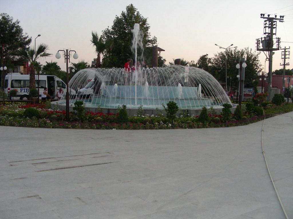 DSCN4601